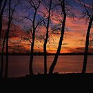 December Sunset by grinandbearit