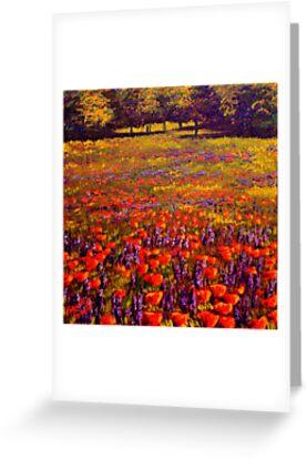 Sonoma Spring Meadow by sesillie