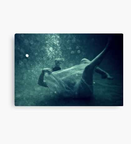Great White Bear Canvas Print