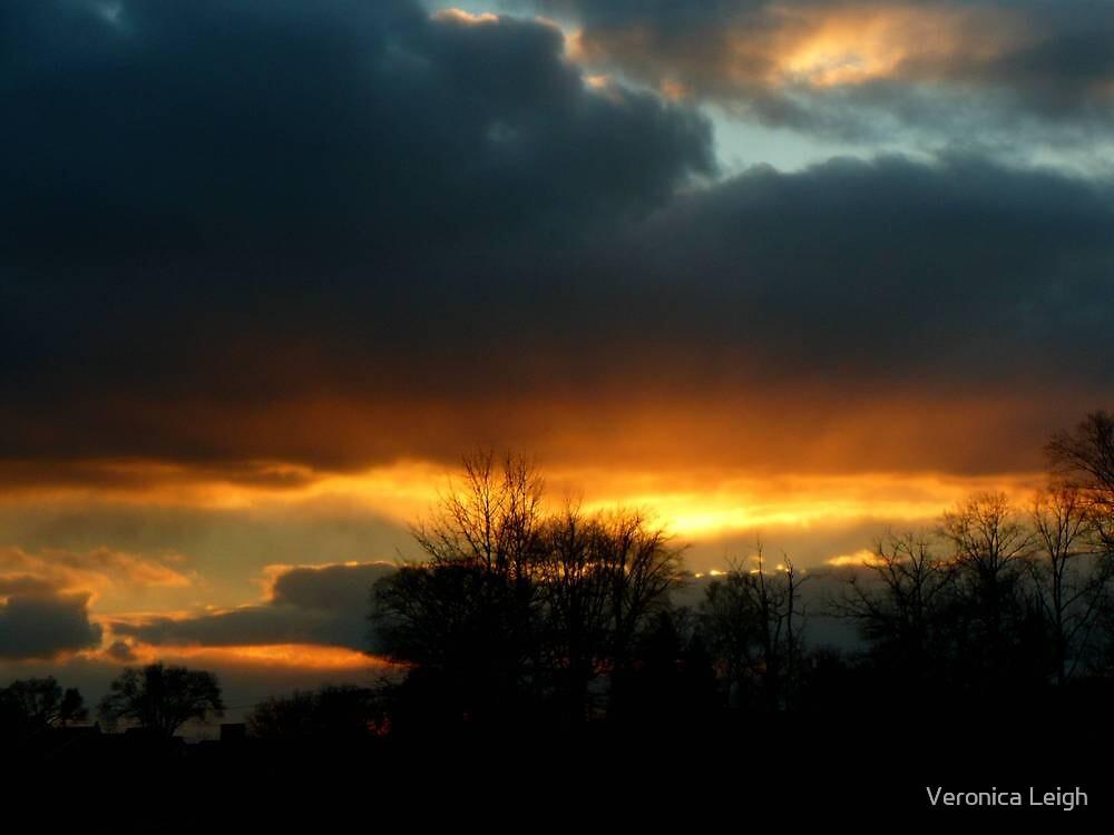 Glow Before Dawn by Veronica Schultz