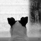 Rainy Days And Mondays by rasnidreamer