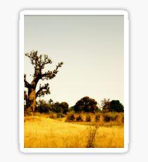 a vast Senegal landscape Sticker
