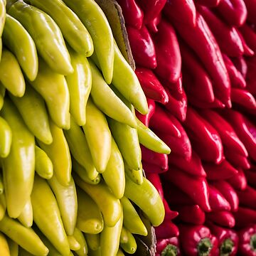 Chilli Peppers by Tonywallbank
