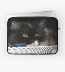 Cat Wanna Study Laptop Sleeve
