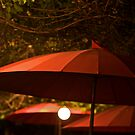3 umbrellas 2 lights by linelight