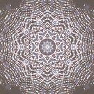 Spider Web Kaleidoscope by Erica Long