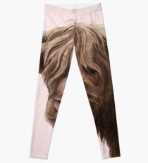 highland cattle portrait  Leggings