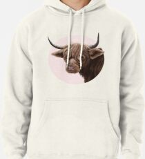 highland cattle portrait  Pullover Hoodie