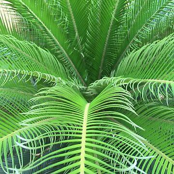 Natural Plant Outdoor by AravindTeki