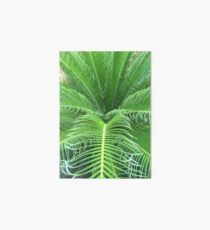 Natural Plant Outdoor Art Board