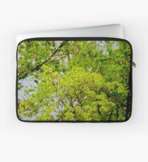 Maple tree blossoms 2 Laptop Sleeve