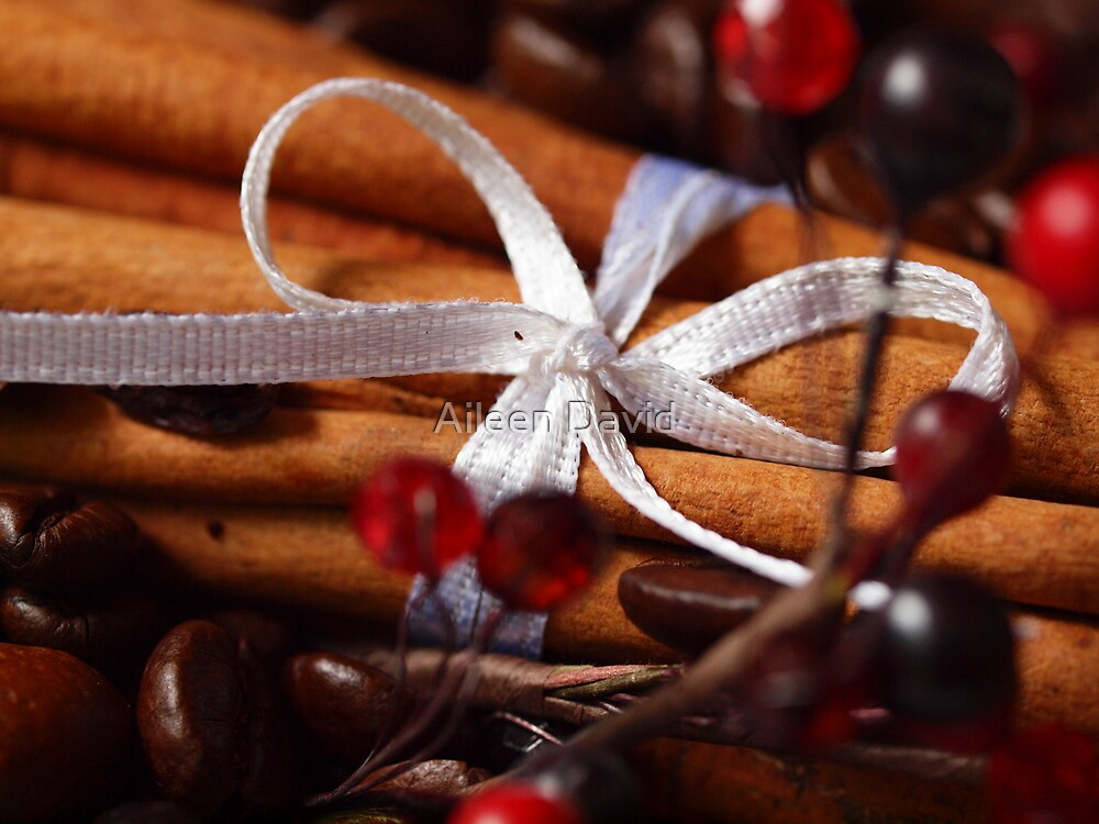 The Scents of Christmas by Aileen David