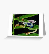 Treefrog Greeting Card