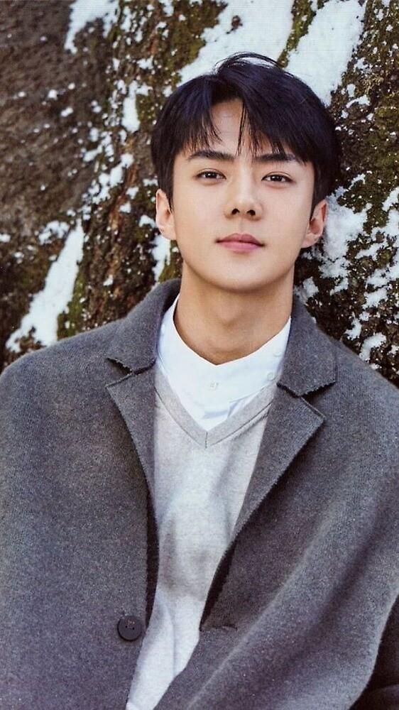 49+ Exo Sehun Hd Photos Pictures
