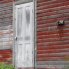 White Door by Tracy Wazny