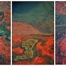 Wet Rock Detail (Triptych) by Nico Kenderessy