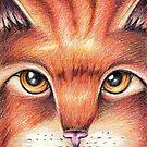 Warrior Cats Alderheart by moonphiredesign