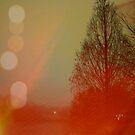 corduroy sky by Morgan Kendall