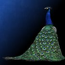 Dressed To Party - Male Peacock by DebiDalio