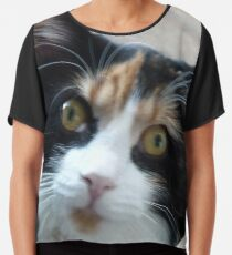 Puce chatte calicot Top mousseline