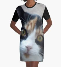 Puce chatte calicot Robe t-shirt