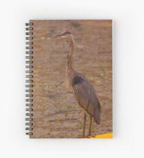 Big Blue Heron - Rideau River Spiral Notebook