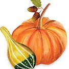 Pumpkin and Squash by Lucinda Kidney