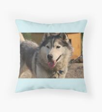 Canadian Malamute Husky Throw Pillow