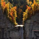 New York's Taughannock falls IV by PJS15204