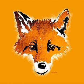 Fox on Orange by f-zimba