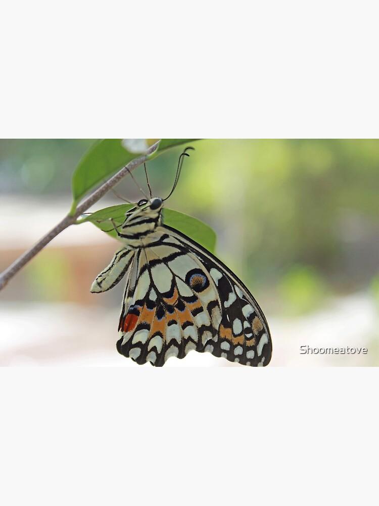 «Donnez des ailes à vos projets!» par Shoomeatove