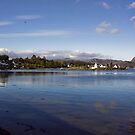 From Plockton Harbour by Lynne Morris