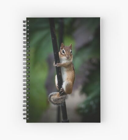 Hanging In Spiral Notebook