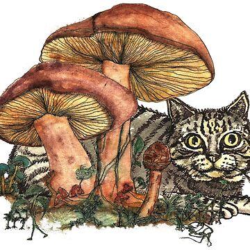 Mushroom and Cat by felissimha