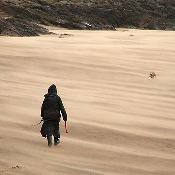 Walking the dog in the wind on a sandy beach by crware
