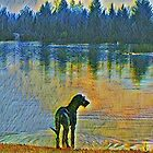 Reflections in Oil by DigiDog Designs