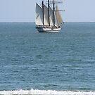 Pirates in the Harbor! by signaturelaurel