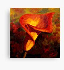 Fiery Calla Lily Canvas Print