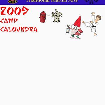 Camp Caloundra 2009 by shipsoo