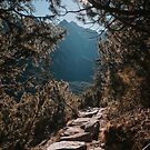 On the trail - Landscape and Nature Photography by ewkaphoto