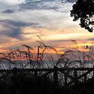 Santa Monica Sunset I by Gloria Abbey