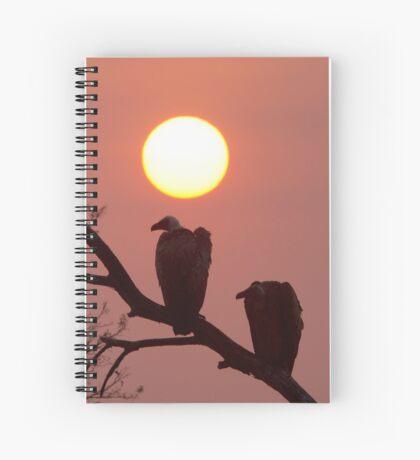 Vulture Sunset Spiral Notebook