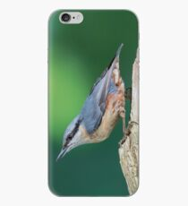 Upsidedown nuthatch iPhone Case