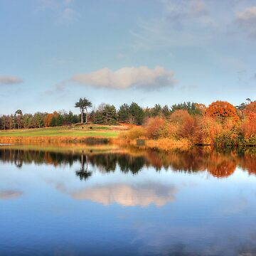 Moat Reflection by ViczS
