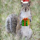 Christmas Gift From Squirrel by Zina Stromberg