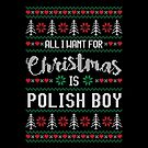 All I Want For Christmas Is Polish Boy Ugly Christmas Sweater by wantneedlove