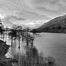 Loch Tay View - B&W by Tom Gomez
