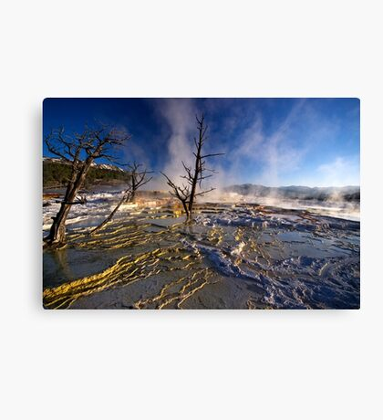 Mammoth Hot Springs - Catching Rays Canvas Print