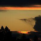 An Evening in Paradise by Vivek Bakshi