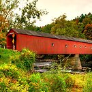 Covered Bridge by TJ Baccari Photography